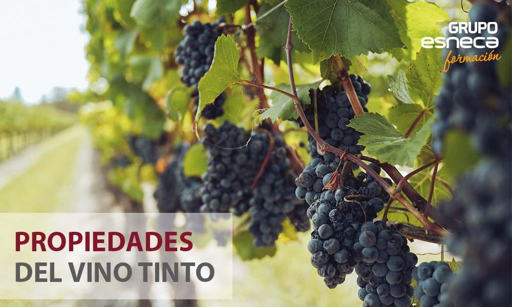 5 propiedades del vino tinto que debes conocer